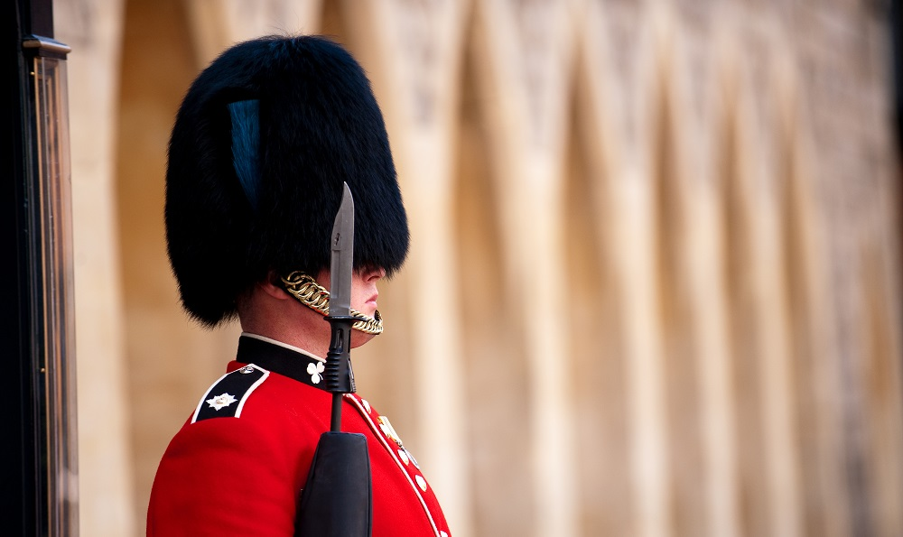 Guard View
